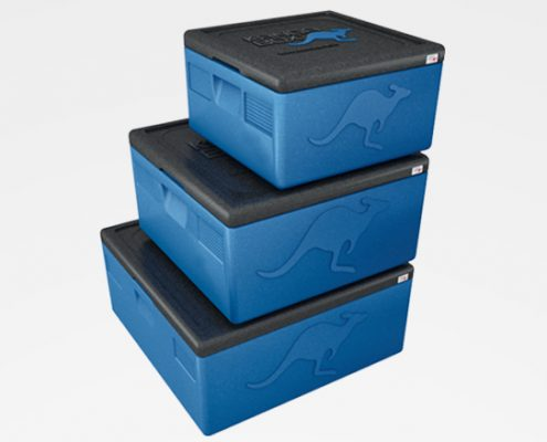 packaging thermo box insulated box thermo container insulated container