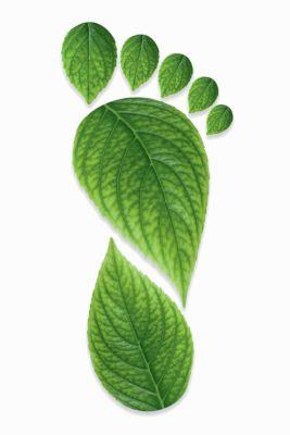 Umweltbilanz Leergut